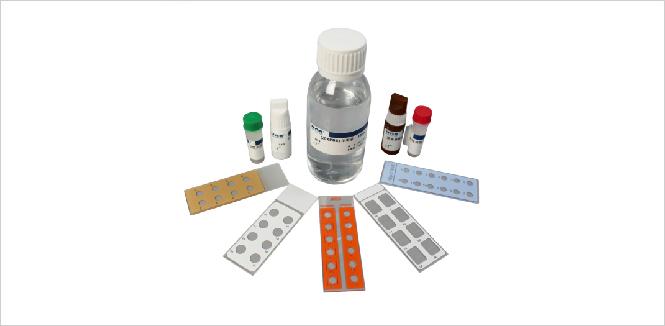 产品标准:YZB/苏0832-2014 抗双链DNA抗体IgG检测试剂盒(间接免疫荧光法) 产品性能结构及组成:抗双链DNA抗体IgG检测试剂盒(间接免疫荧光法)由基质玻片(型号:试剂盒含10张基质玻片,每张玻片含5个包被有绿蝇短膜虫为基质的反应区105孔、型号:试剂盒含8张基质玻片,每张玻片含6个包被有绿蝇短膜虫为基质的反应区86孔、型号:试剂盒含6张基质玻片,每张玻片含8个包被有绿蝇短膜虫为基质的反应区68孔、型号IV:试剂盒含5张基质玻片,每张玻片含10个包被有绿蝇短膜虫为基质的反应区5