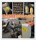 全自动多功能柠檬保鲜包装机