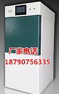 过氧化氢低温等离子灭菌器220L等离子灭菌柜消毒设备