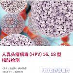 人乳头瘤病毒(HPV)16、18型核酸检测试剂盒