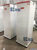 低温-40℃防爆立式冰柜BL-DW270FL